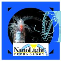 Division---Nanolight