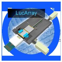 Subsidiary---LucArray